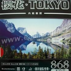 Kokutaku Tokyo 868