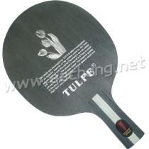 Tulpe 603