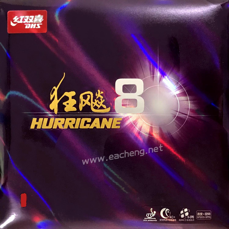 DHS Hurricane8