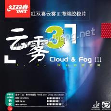 DHS Cloud&Fog3