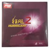 DHS Hurricane2