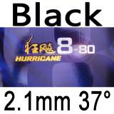 DHS hurricane 8-80