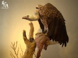 【Pre Order】Original Model Studio The Gyps Vultures Resin Statue Deposit