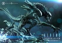 【Pre order】Prime 1 Studio  PMDHAL-05S TUSKED ALIEN BONUS VERSION (DARK HORSE COMICS) Resin Statue Deposit(Copyright)
